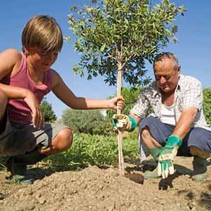 treeplanting_helpsaveearth.org