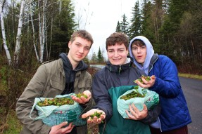 Three youth holding up bags of fiddleheads